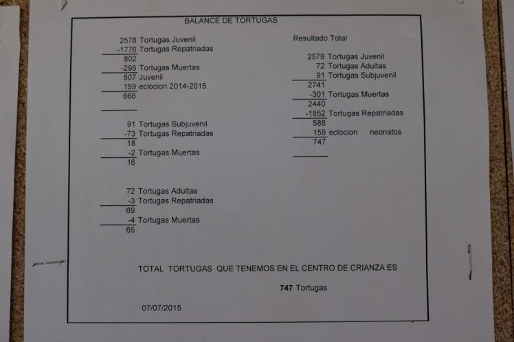DSCF1745 (Medium)